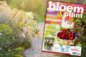 Bloem & Plant juli