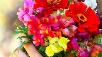 10 tips voor een kleurrijk boeket met bloemen