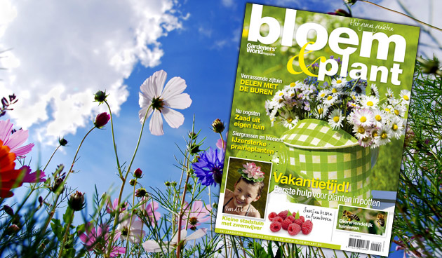 Bloem & Plant augustus 2012