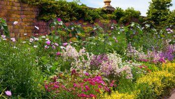 Tuinontwerp stap 3: Type beplanting en bestrating kiezen