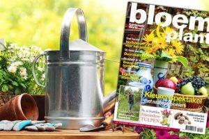 Bloem & Plant september