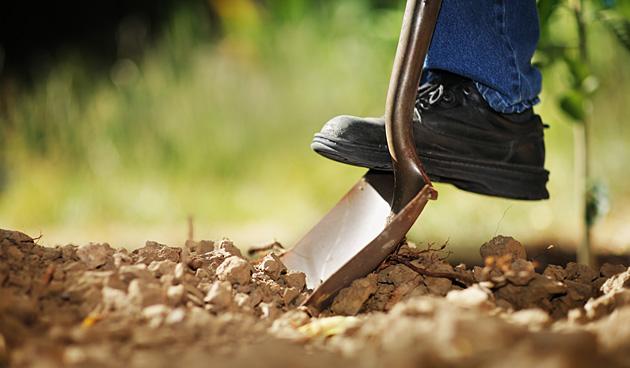 Tuinontwerp stap 4: Tuin aanleggen