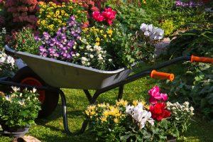 Zelf je tuin aanleggen?