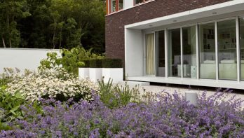 Strakke tuin in polderlandschap