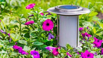 Eenvoudig en milieuvriendelijk: tuinverlichting op zonne-energie