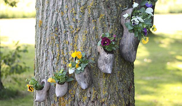 Kleurrijke pop-up tuinen met violen