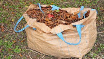 Bladcompost als bodemverbeteraar