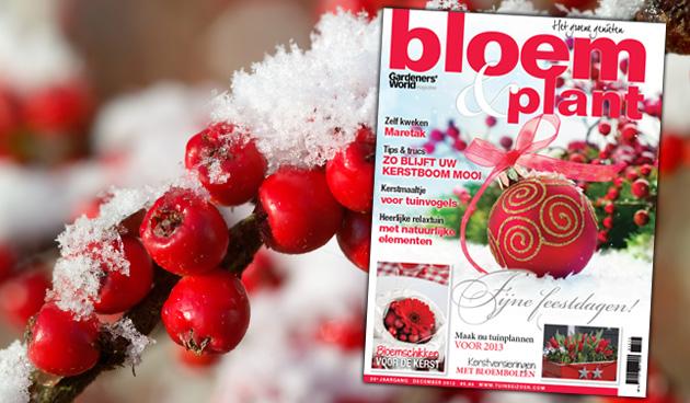 Bloem & Plant december 2012