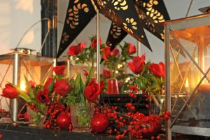 Bloembollen voor kerstmis