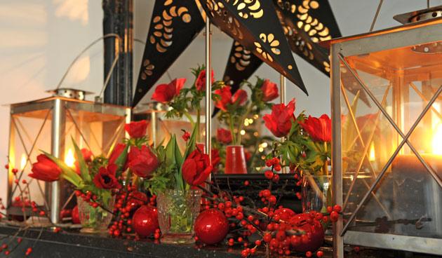 Kerstmis met bloembollen