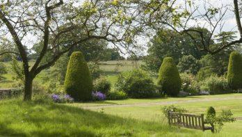 5 Tips om je tuin groter te laten lijken