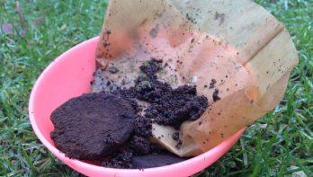 Koffiedik in de tuin