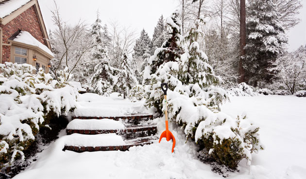Tien tips voor de wintertuin