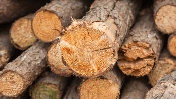 Maak een houtstapel