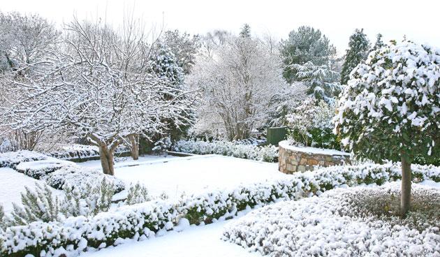 Structuur in de wintertuin