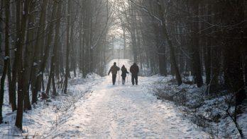 Lekker wandelen in het nieuwe jaar