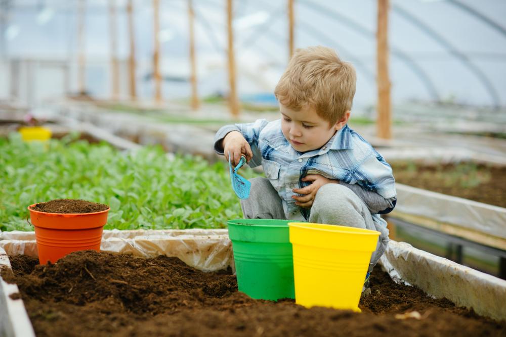 moestuin, bak, kinderbak, tuinseizoen