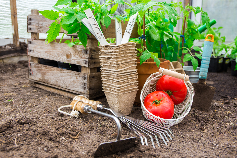 vierkantemetertuin, moestuin, moestuinieren, tuinseizoen