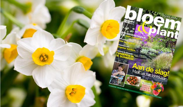 Bloem & Plant maart 2013