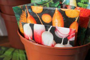 Groenten in pot