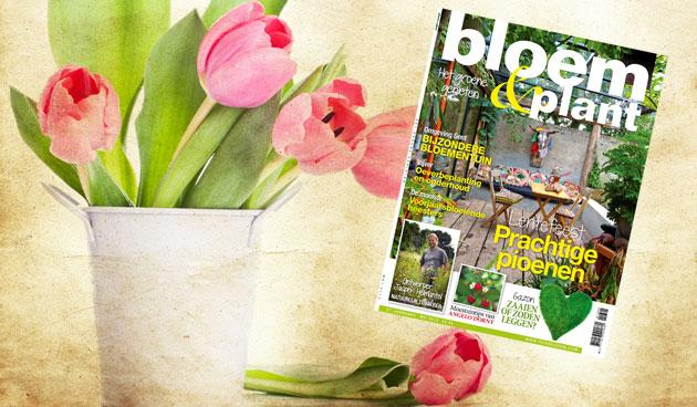 Bloem & Plant mei 2013