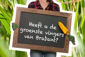 Brabantse tuinwedstrijd