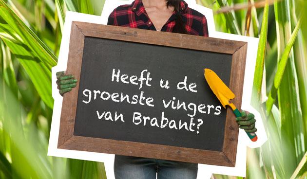 Doe mee aan de Brabantse tuinwedstrijd!