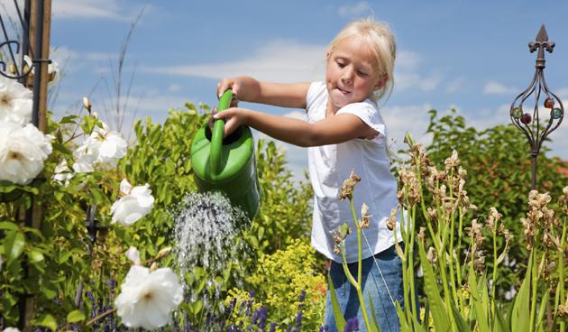 Gieten en sproeien tijdens zonnige dagen