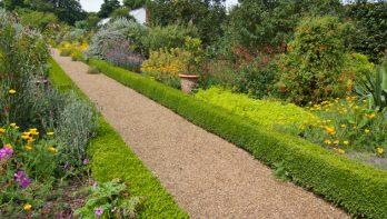 Hagen als groene bouwelementen voor je tuin