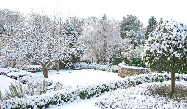 Tips voor een geweldige wintertuin