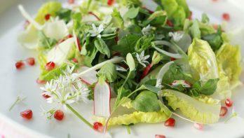 Salade met daslook