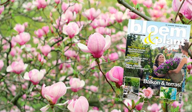 Bloem & Plant maart 2014