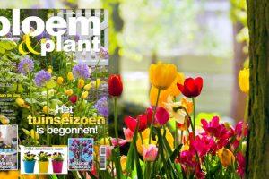 Bloem & Plant april 2014
