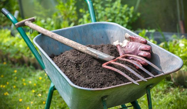 Tuin bemesten: wanneer en met welke meststof?