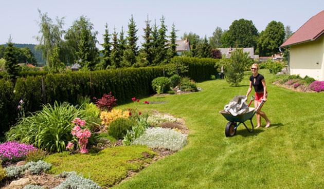 Tips voor tuinbemesting