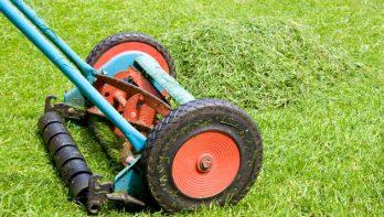 Wanneer moet je het gras maaien?