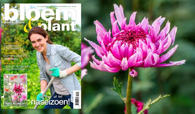 Bloem & Plant september/oktober 2014