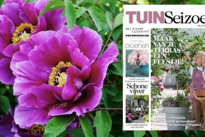 Tuinseizoen mei 2015