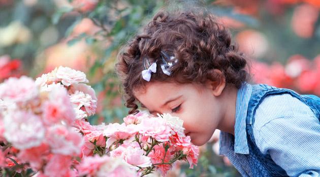 kindje ruikt aan rozen