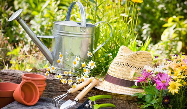 maak je tuin vakantieklaar