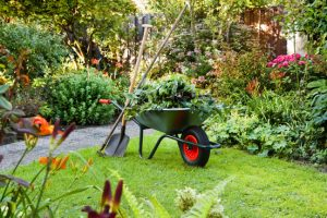 zomerklusjes tuin