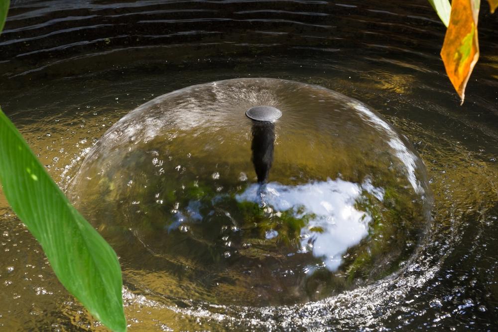 Vijver, fontein, luchtbellen, tuizeizoen