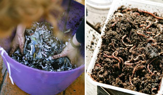 wormenbed-maken