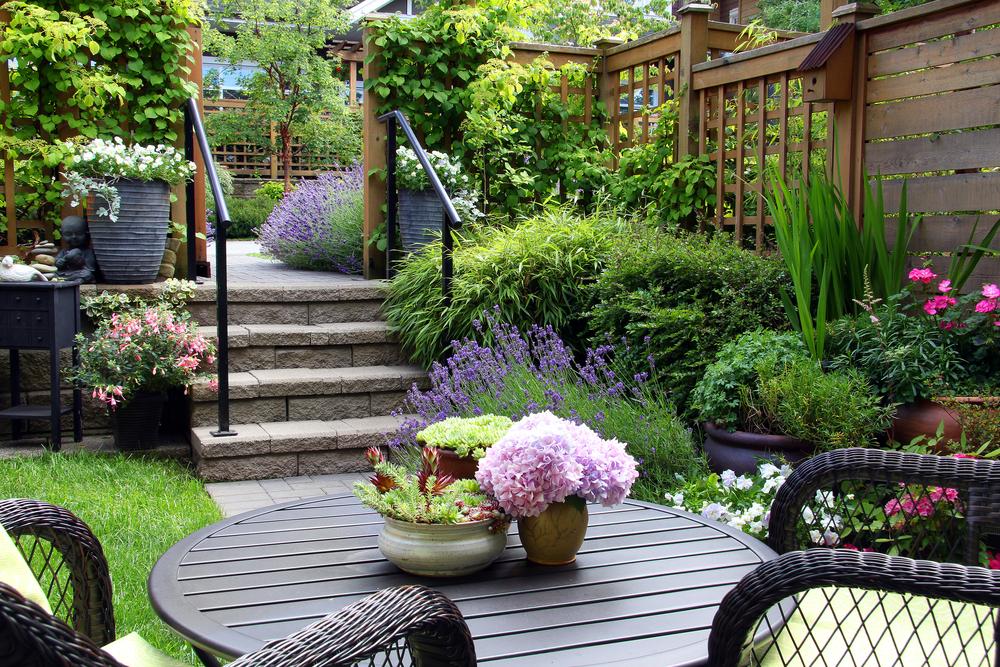 kleine tuin, terras, hoogteverschil, tuinseizoen