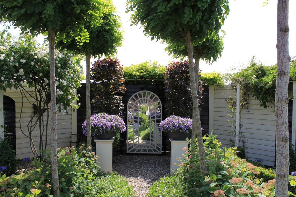 spiegel, kleine tuin, gezichtsbedrog, tuinseizoen