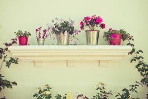 tips voor kleine tuinen