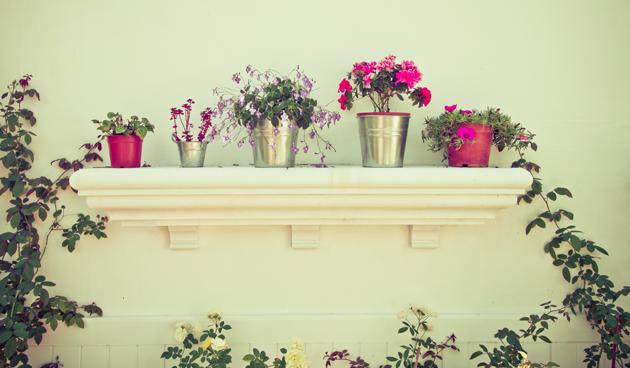 8 tips voor een kleine tuin tuinseizoen for Tuinontwerp tips