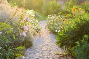 tuin-ontwerpen-met-matrix-t