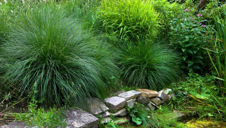 Genieten van je tuin