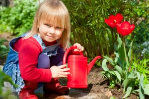 tulpen-water-geven